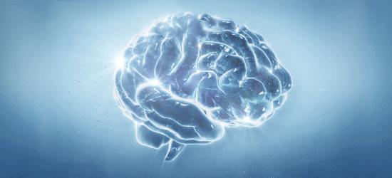 Philips Neuro diagnostics - portfolio page